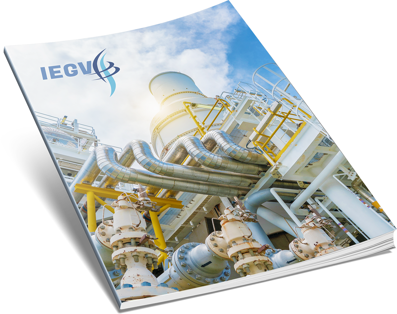 IEGV Product Catalog Brochure